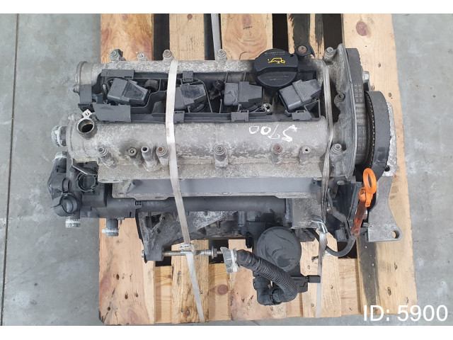 Motor complet fara anexe Volkswagen AVF, Skoda Fabia Y6, Euro 4, 59 KW, 1.4 i LPG